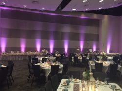 Uplights for rent for a wedding reception in Indiana.